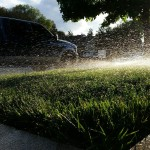 This lawn has been watered only with Recycled Water since Jan 1, 2015.