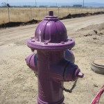 Recycled water hydrant.