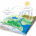Hydrologic Cycle (image: Beaver River Watershed)