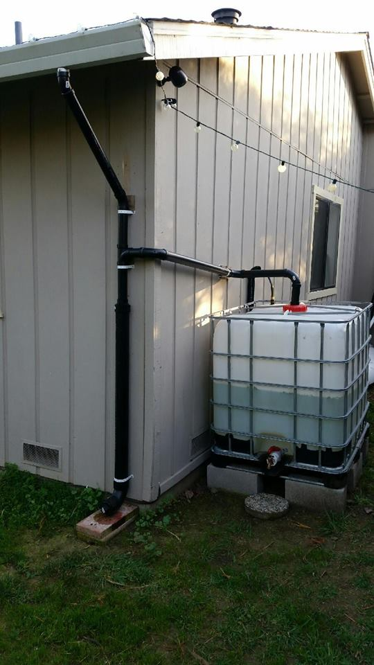 IBC Tote hooked up to downspout.