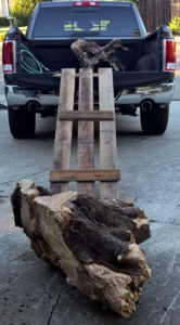 Built a ramp to roll the stump into the truck.